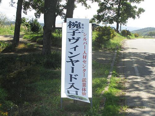 budosyukakuueda10.jpg